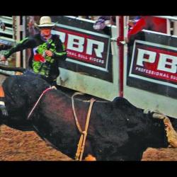 foto de The BJCC Birmingham Alabama